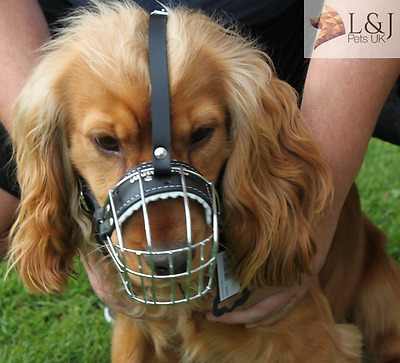 £19 • Buy  New Metal STRONG Wire Basket Dog Muzzle For Cocker Spaniel  3 - 3X