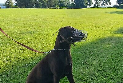 £23.50 • Buy New Strong Metal Wire Basket  Dog Muzzle For  Shepherd , Labrador