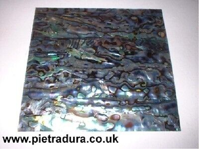 Abalone / Paua Shell Veneer Laminate 4 Luthier Inlay 4 X 4 Inches  • 9£