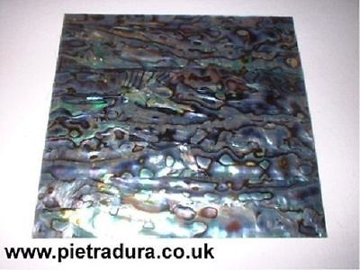 Abalone / Paua Shell Veneer Laminate 4 Luthier Inlay 90 X 90 Mm • 7.50£