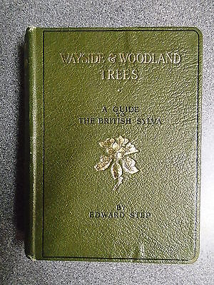 WAYSIDE & WOODLAND TREES By EDWARD STEP - FREDERICK WARNE & CO 1942 - H/B • 9.99£