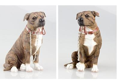 NEW Sitting Brown Staffy With Lead Figurine - Leonardo Dog Collection Boxed • 18.99£