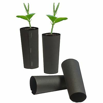 Grow Tubes Deep Tap Root Trainers Sweet Pea, Beans, Onion, Leek, Carrot • 10.99£