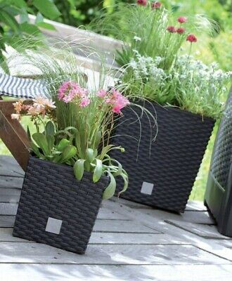 Black Rattan Square Plant Flower Pot Garden Home Holder Pots Planter Herb 26cm • 7.99£