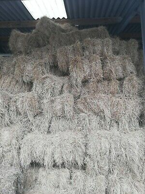 £4 • Buy HAY BALES FOR SALE. 2019! Conventional Small Square Bales