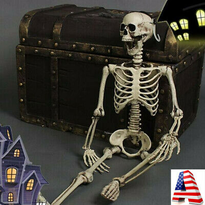 $26.99 • Buy 90cm Poseable Full Life Size Human Skeleton Halloween Decoration Party Prop US