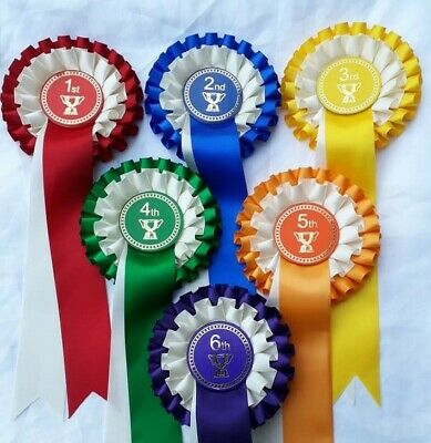 £5.10 • Buy 1st To 6th Place Or 1st To 3rd Place Placing Rosettes, Horse Show, Dog - Trophy