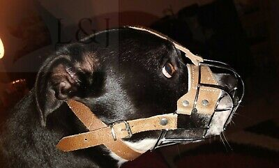 £20.99 • Buy Strong Metal Wire Basket Dog Muzzle Staffordshire Bull Terrier Staffy , Staffie