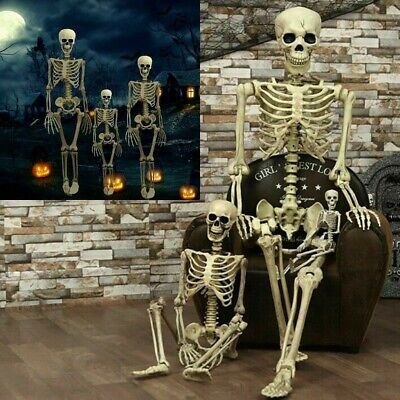 $15.96 • Buy Halloween Props Life Size Skeleton Hanging Prop Haunted House Decoration Haunted