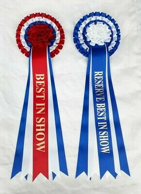£2.20 • Buy Best In Show And Reserve Best In Show Rosette Dog Showrosettes - Pompom Design