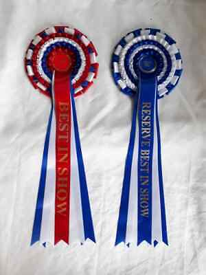 £3.10 • Buy Best In Show / Reserve BIS Rosettes, Large Dog Show Rosettes, Can Personalise