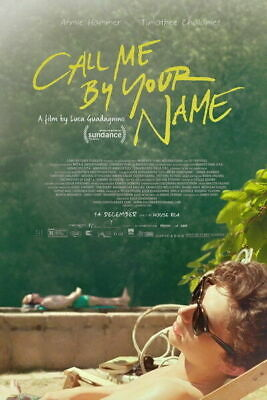 AU26.95 • Buy 252622 Call Me By Your Name Romance 2017 Movie GLOSSY PRINT POSTER AU