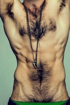 $ CDN4.22 • Buy Shirtless Male Athletic Body Hairy Arm Pits Chest Abs Physique PHOTO 4X6 F950