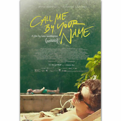 AU19.95 • Buy 257169 Call Me By Your Name Movie Luca Guadagnino 2018 GLOSSY PRINT POSTER AU