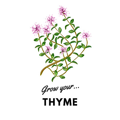 Grow Your Thyme: Organic Seeds • 3.99£