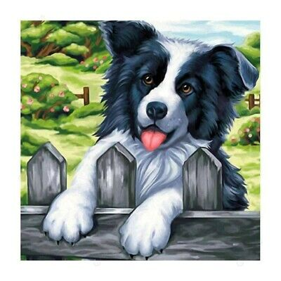 AU16.49 • Buy 5D Full Drill Diamond Painting Kits Embroidery Decor Dog Animals DIY Art Gift