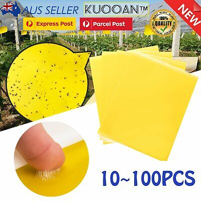 AU13.99 • Buy Bulk Yellow Sticky Insect Killer Whitefly Thrip Fruit Fly Gnat Leafminer Trap AU