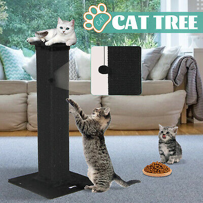 AU69.90 • Buy 64CM Cat Tree Scratching Post Scratcher Tower Condo Gym Toy House Furniture Wood