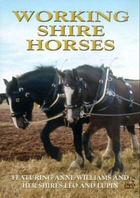 Working Shire Horses [DVD] -  CD ZGVG The Fast Free Shipping • 8.10£
