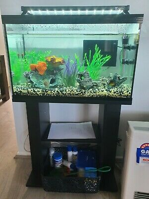 AU1.26 • Buy Brand New Complete Fish Tank Setup. PComes With Everything.