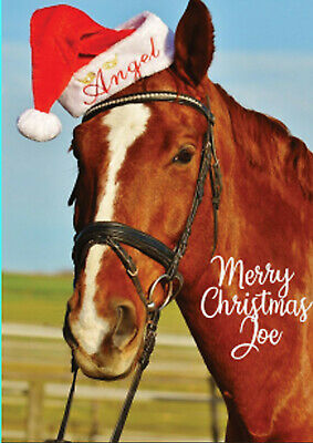 £2.80 • Buy Personalised Horse Card Christmas Riding Rider Santa