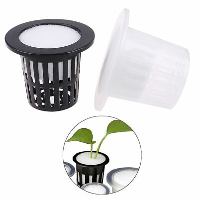 $ CDN10.83 • Buy Mesh Pot Net Cup Basket Hydroponic System Vegetable Cloning Foam Seed Germinate