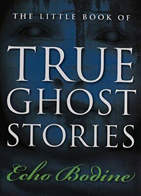 Little Book Of True Ghost Stories By Echo Bodine (Paperback, 2011) • 13.60£