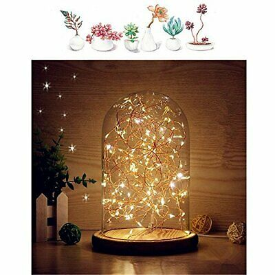 MUCHER Glass Bell Jar Display Dome Bamboo Base USB Bedside Table Lamp With LED • 22.99£