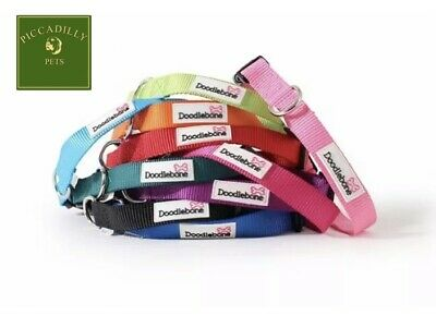 Doodlebone Dog Puppy Bold Adjustable Collars Durable Nylon 5 Sizes X 12 Colours • 3.74£