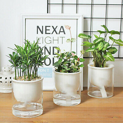 Accessories Plant Pots Nursery Pot Home Decor PP Resin Automatic Watering • 4.55£