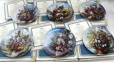 Set Of 6 CLASSIC ROSE Rosenthal Floral COLLECTOR PLATES Certificates Boxes - S46 • 10.50£