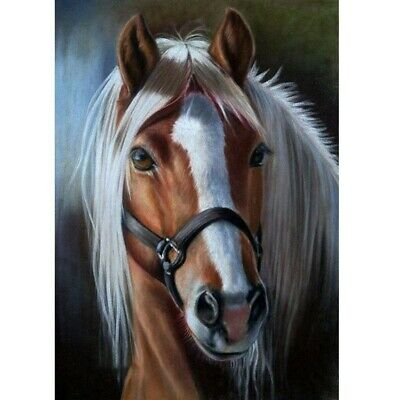 AU15.99 • Buy 5D Full Drill Diamond Painting DIY Horse Embroidery Kits Cross Stitch Wall Decor
