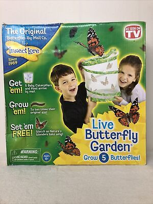 £15.19 • Buy New Open Box- Insect Lore - Live Butterfly Garden With Caterpillar Voucher