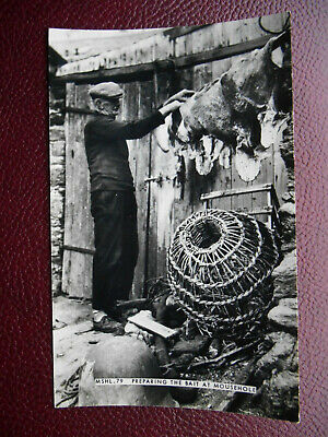 Fisherman Preparing Bait MOUSEHOLE Cornwall - Friths RP C1960s Lobster Pots • 2.49£