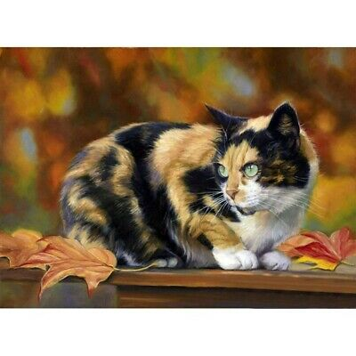 AU12.80 • Buy Diamond Painting 5D Craft Full Drill Multicolorful Cat Kit Embroidery DIY Canvas