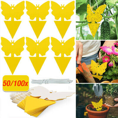 AU26.98 • Buy 50/100PCS Yellow Sticky Insect Trap Killer Thrip Plant Fruit Fly Gnat Catcher
