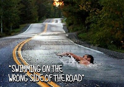 £3.95 • Buy  Swimming On The Wrong Side Of The Road . Surreal Poster.