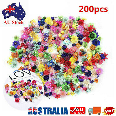 AU9.90 • Buy 200x Real Dried Flower For DIY Craft Epoxy Resin Jewellery Soap Candle Making AU