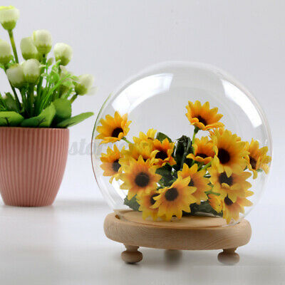 £11.99 • Buy 2PC Round  Decorative Glass Dome + Wooden Base Cloche Bell Jar LED Light Display