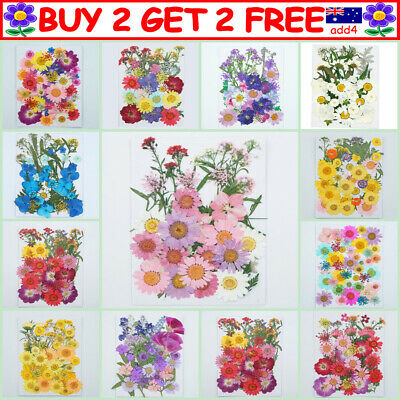 AU12.99 • Buy 35-42PCS Real Dried Flowers Pressed Leaves For Epoxy Resin Jewelry Making DIY TT