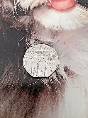 2018 Representation Of The People BUNC  50 Pence Coin In A Plastic Holder. • 2.99£