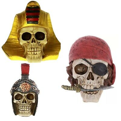£17.18 • Buy Scary Pharaoh, Pirate, Viking Skull Head Statue Rare Collectible Home Decoration
