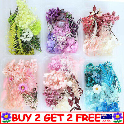 AU11.99 • Buy Assroetd Real Dried Flowers Pressed Leaves For Epoxys Resins Jewelry Making TT