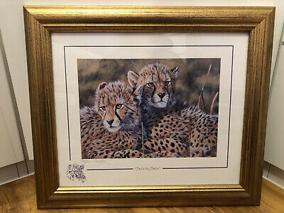 """£35 • Buy Stephen Gayford Nature Print Of Cheetahs """"Side By Side"""""""