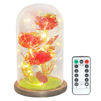 AU30.77 • Buy 3 Heads Gold Foil Rose In Glass Dome LED Light Valentine Day Gift (Red)