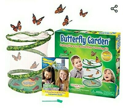 £23 • Buy Insect Lore Kids Live Butterfly Garden Hatching Kit- Grows 5 Caterpillars New