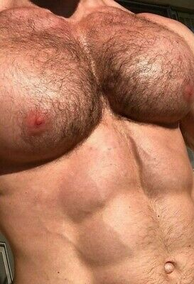 $ CDN6.04 • Buy Shirtless Male Muscular Pumped Pecs Hairy Chest Abs Body Close Up PHOTO 4X6 B281