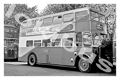 £1.20 • Buy Bus Photograph POTTERIES MOTOR TRACTION JEH 111 [L223] '61