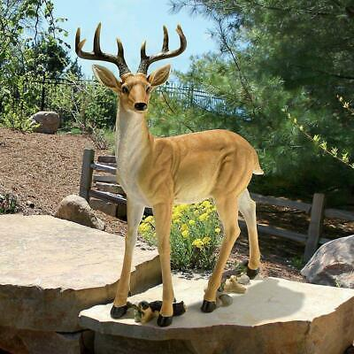£269.89 • Buy Majestic Stag Buck Forest Garden Large Scale Male Deer Wildlife Yard Statue