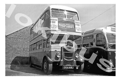 £1.20 • Buy Bus Photograph SOUTHDOWN MOTOR SERVICES GCD 358 [258] Portsmouth '61